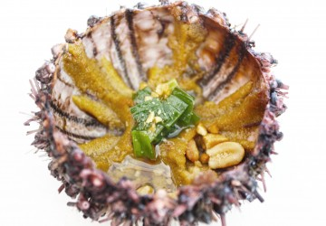 [Vietnam] the time i ate sea urchin