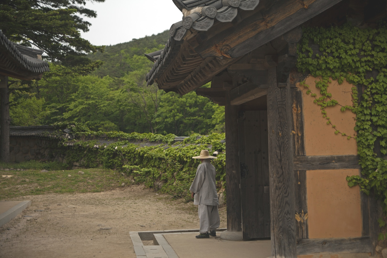 Monk in Seoraksan
