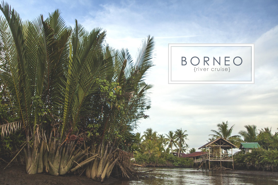 Borneo River Cruise