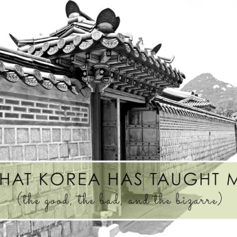 Korea has Taught Me…