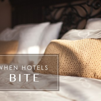 When Hotels Bite
