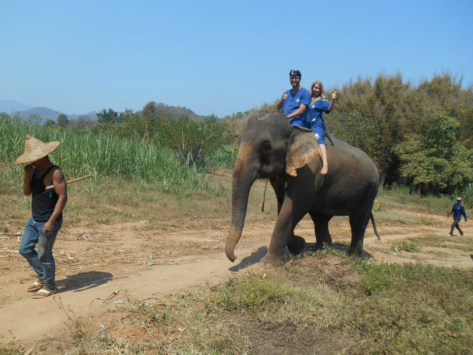 Baan Chang Elephant Park, Chang Mai, Thailand