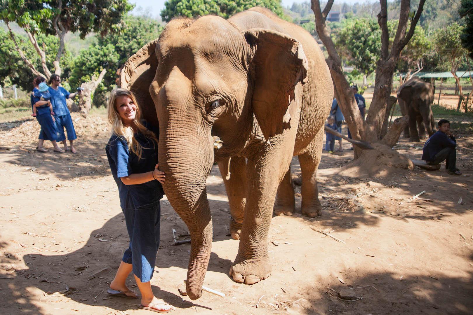Baan Chang Elephant