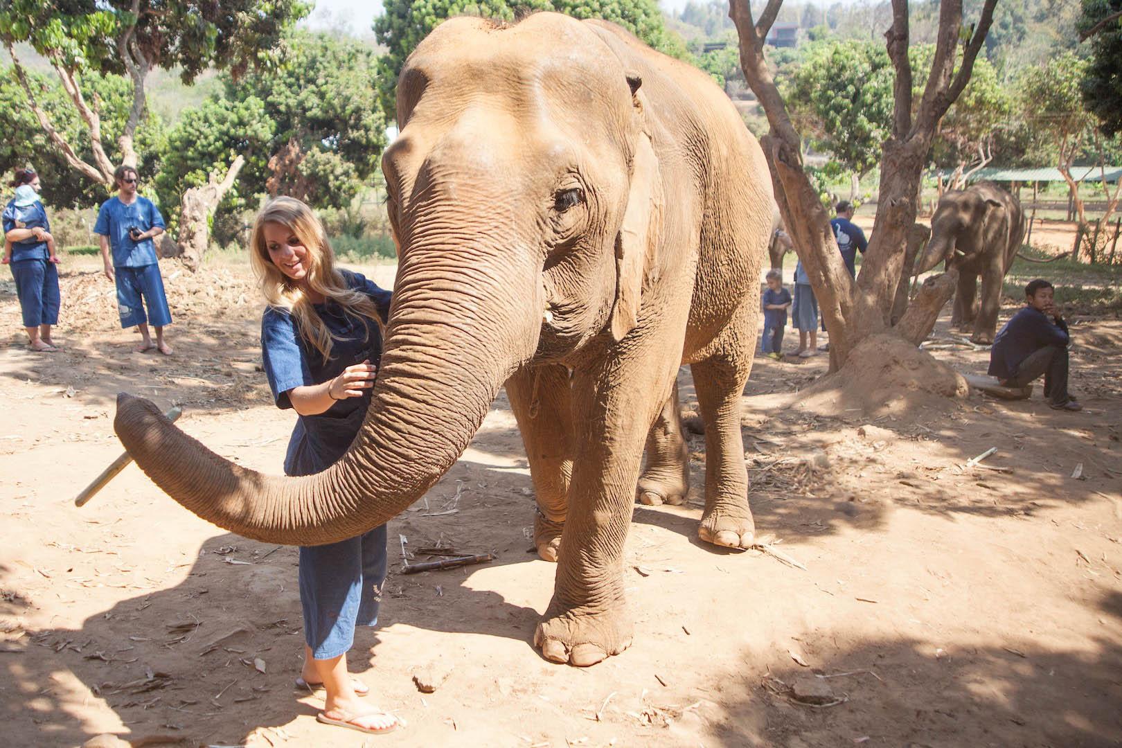 Baan Chang Elephant Park, Chiang Mai, Thailand