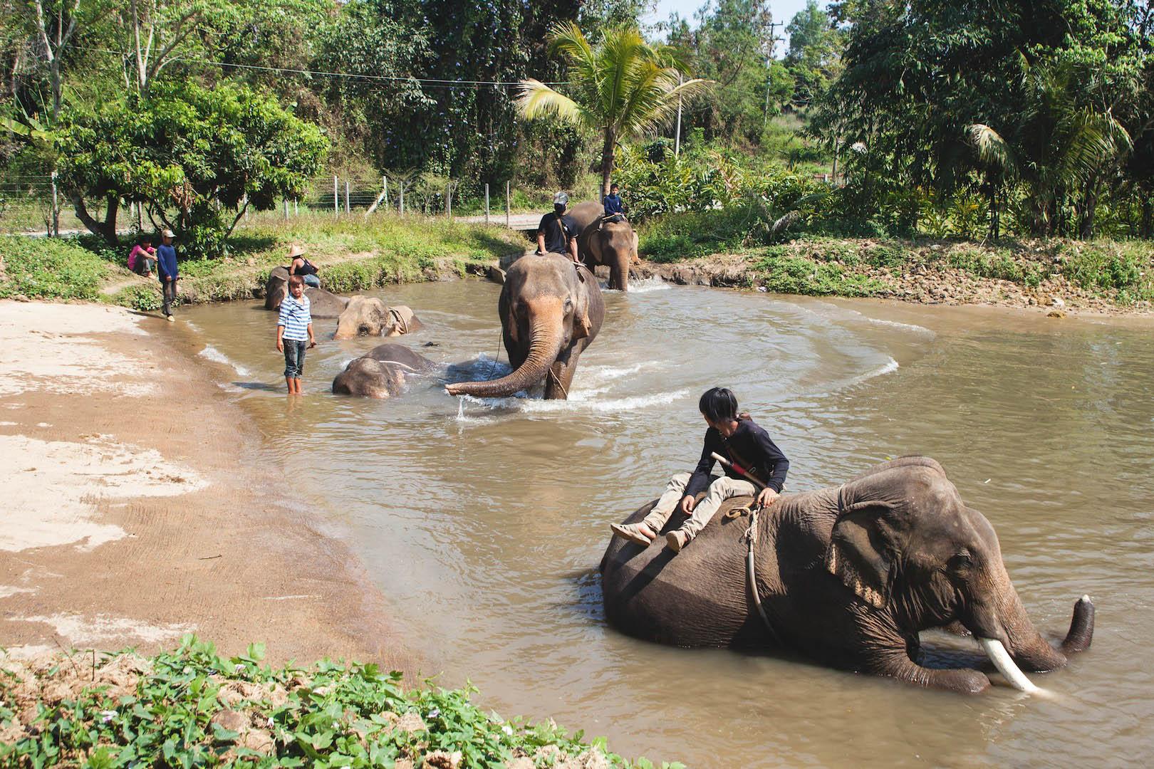 Bath Time in Baan Chang