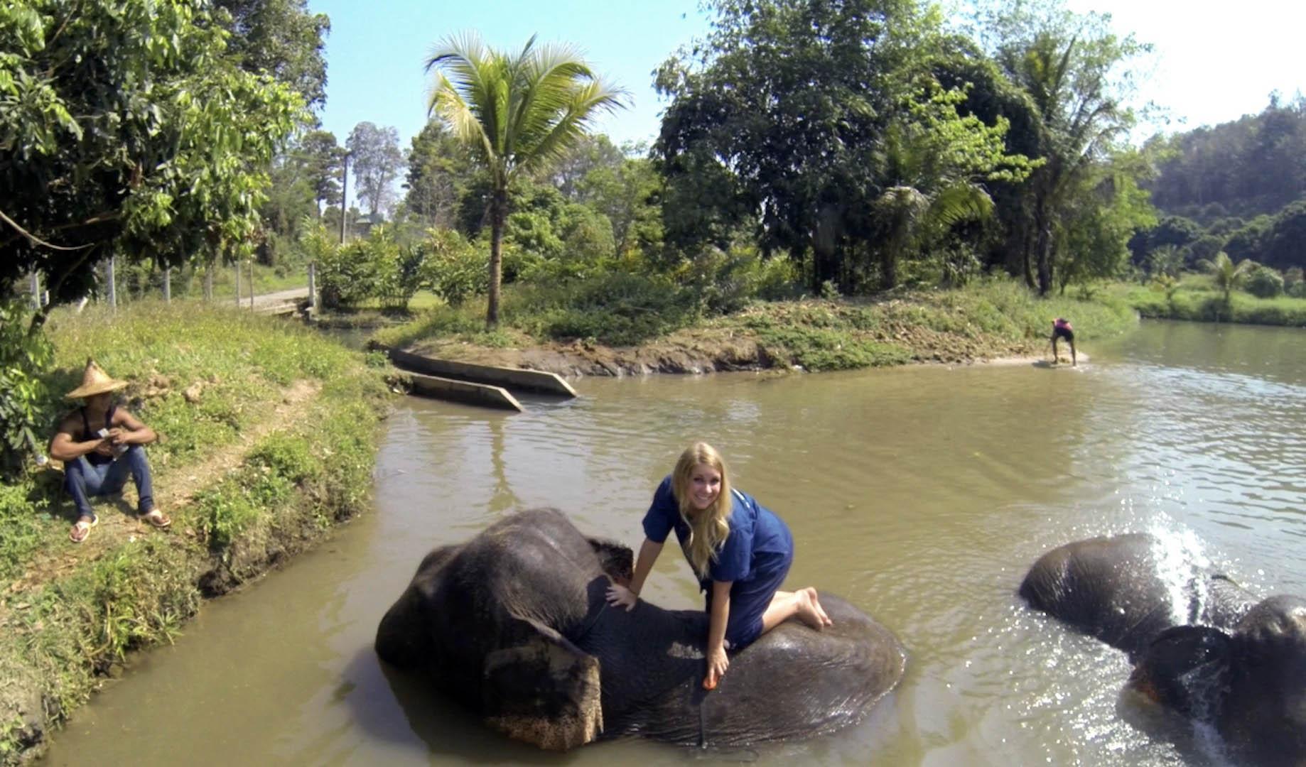 Elephant washing in Baan Chang