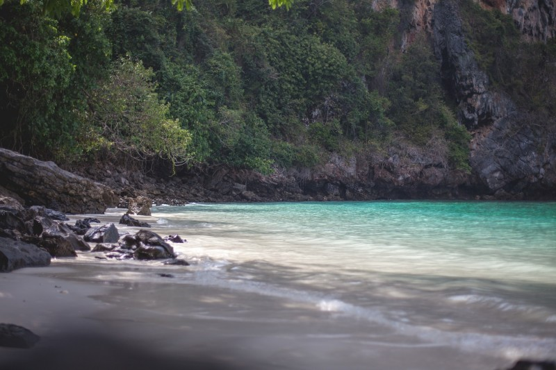 Monkey Beach, Phi Phi Don Island, Thailand