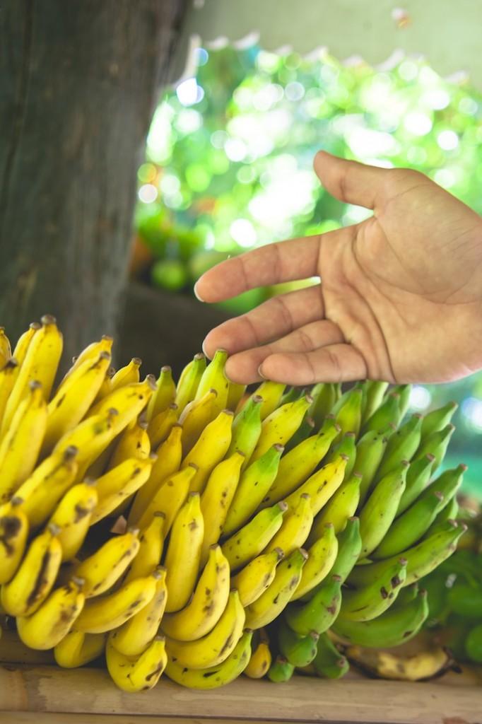 Mini Thai Bananas!