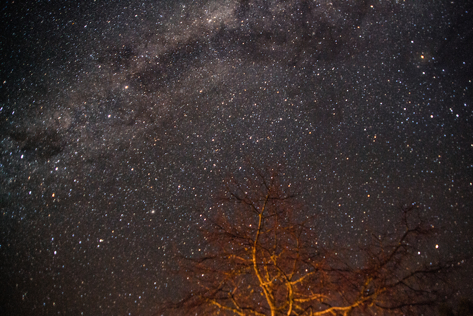 Southland, New Zealand Stars