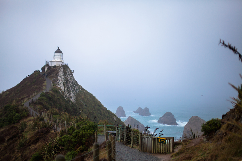 Nugget Point, The Catlins, New Zealand