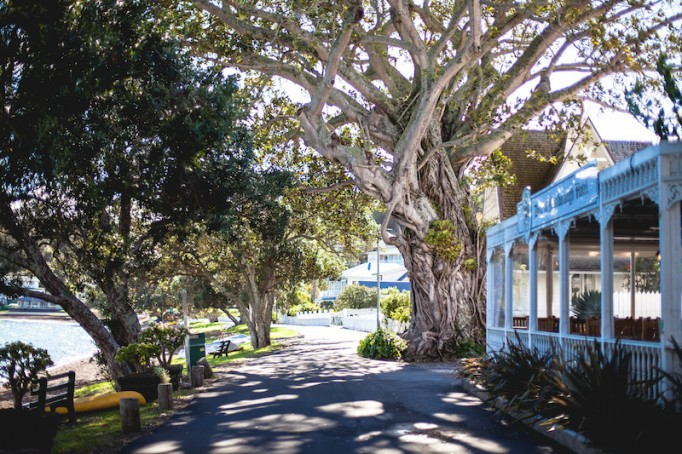 Russell, New Zealand-4