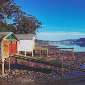 Macandrew Bay