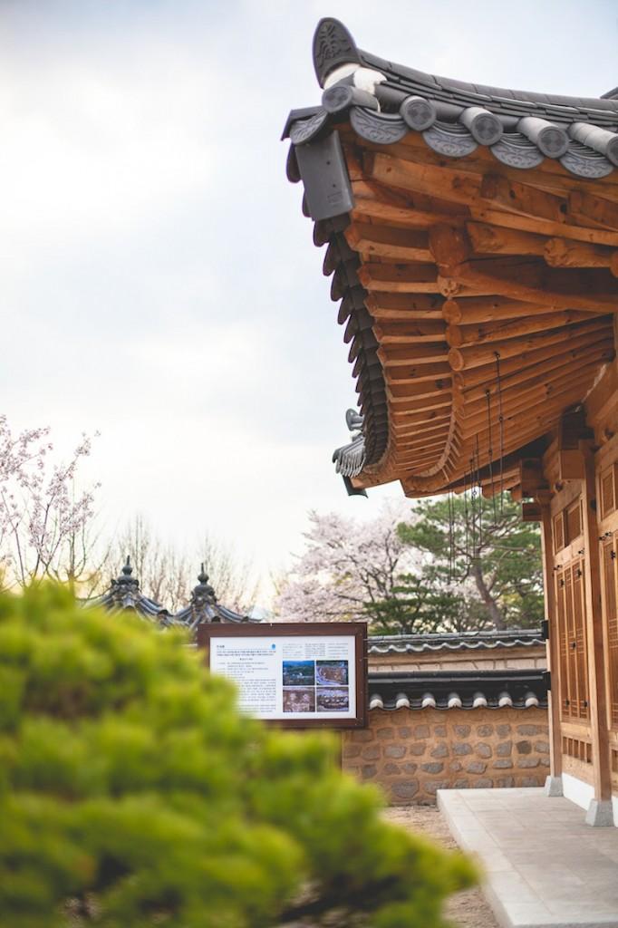 VisitKorea-24