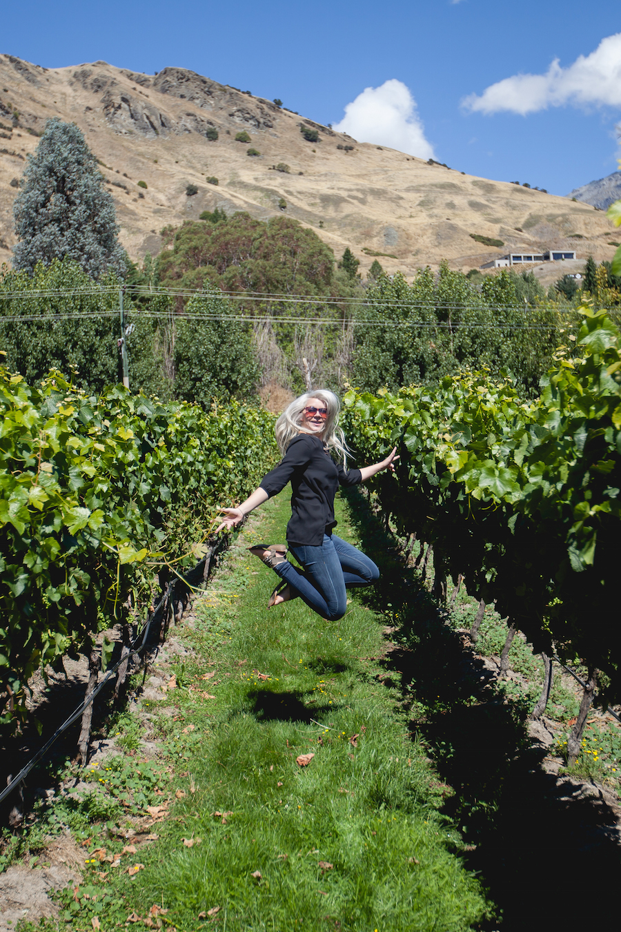 Central Otago Wine Tours