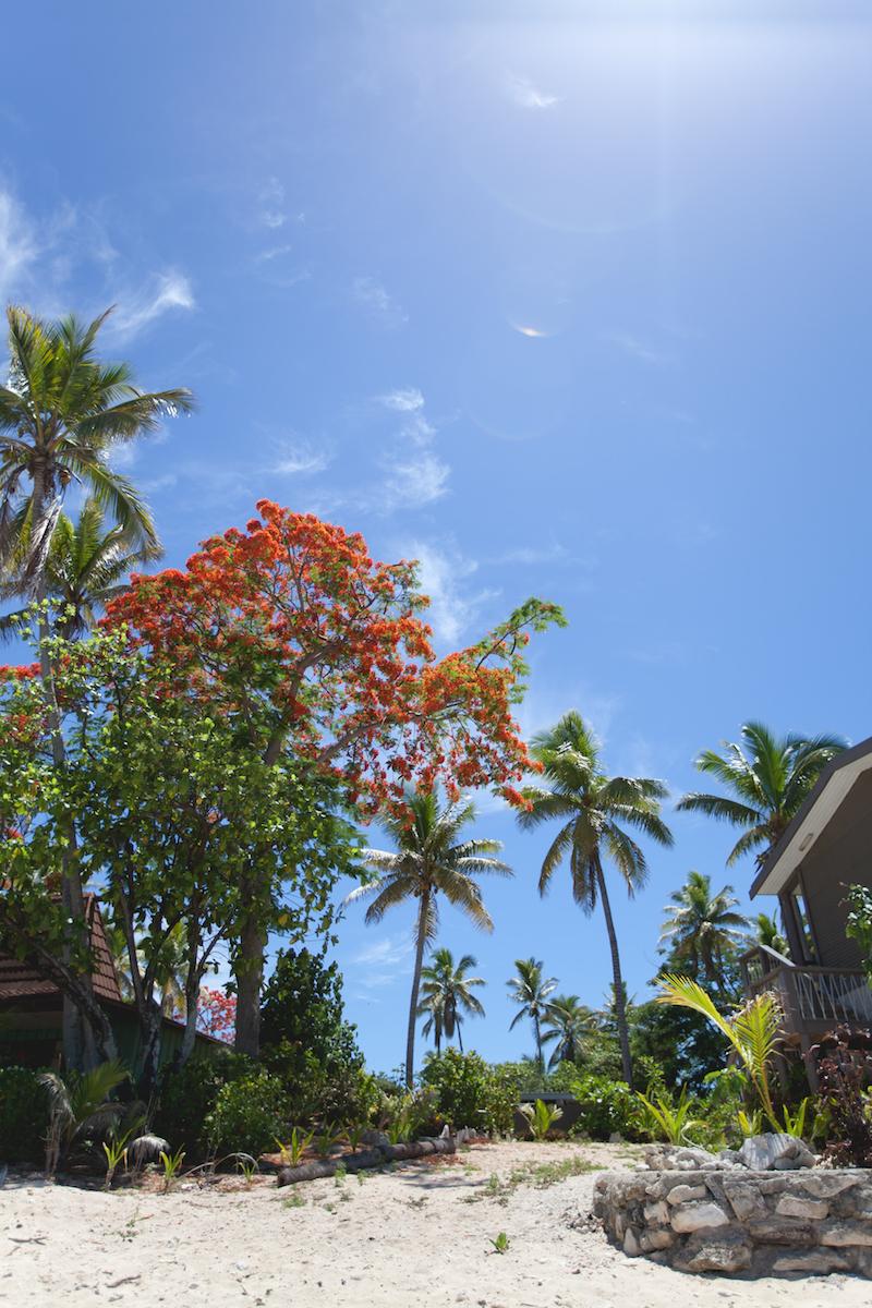 Beachcomber Island, Fiji-5