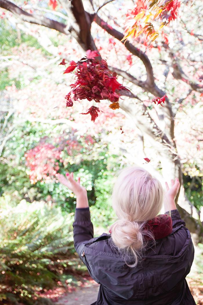 Fall in Dunedin (8 of 9)