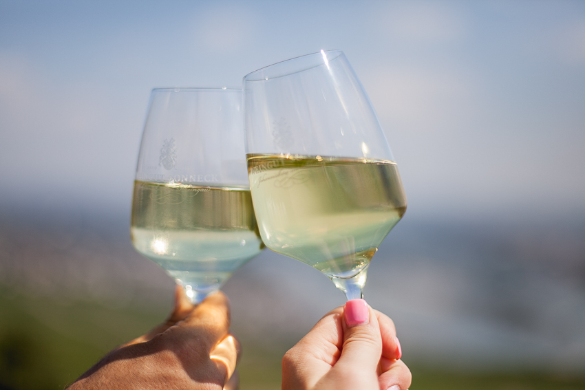 Rhine River wine tasting