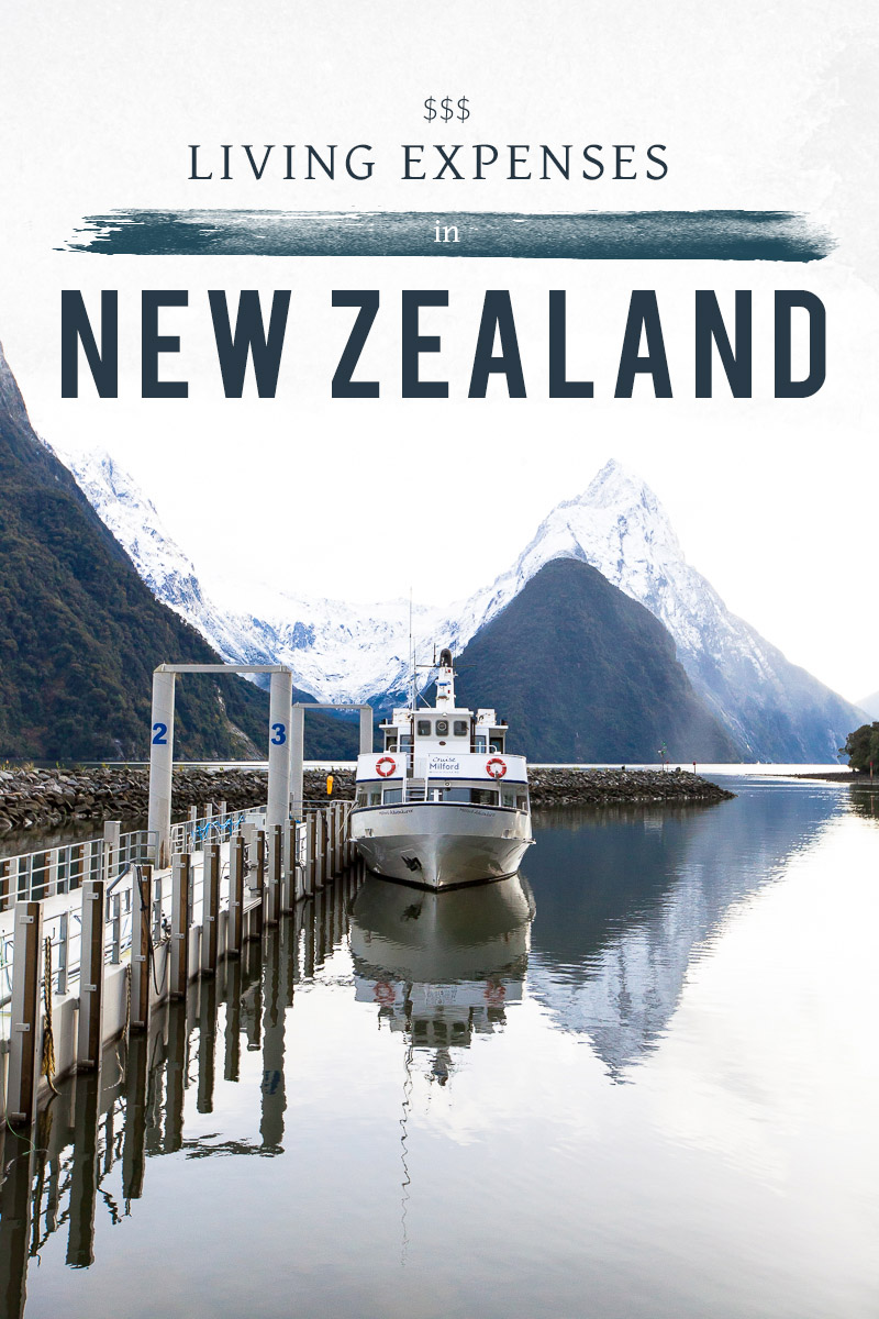 living in new zealand a comprehensive list about what things cost per personhousehold