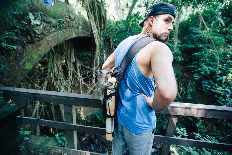 Monkey Forest-32