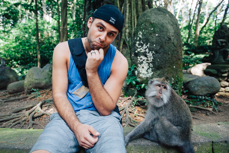 Monkey Forest-9